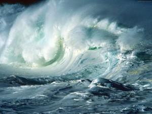 by Ocean Wallpapers